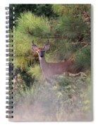 Last Mistake Spiral Notebook