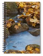 Last Signs Of Autumn 0438 Spiral Notebook