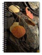 Last Vestige Of Fall Spiral Notebook