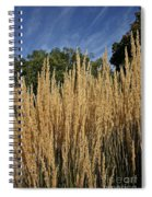 Late Summer Colors Spiral Notebook