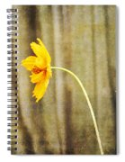 Late Summer Delight Spiral Notebook