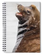 Laughing Sea Lion Spiral Notebook