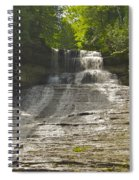 Laughing Whitefish 4608 Spiral Notebook