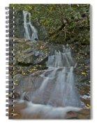 Laurel Falls 6239 8 Spiral Notebook