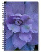 Lavender Blue Spiral Notebook