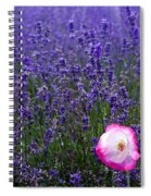 Lavender Field With Poppy Spiral Notebook