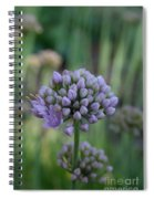 Lavender Flowering Onion Spiral Notebook
