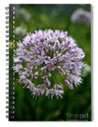 Lavender Globe Lily Spiral Notebook