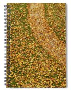Lawn Covered With Fallen Leaves Spiral Notebook