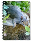 Laying Low Spiral Notebook