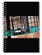 Lazy Bird Spiral Notebook
