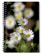 Lazy Daisy Spiral Notebook