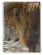 Le Lion Spiral Notebook