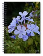 Leadwort Spiral Notebook