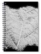 Leaf Design- Black And White Spiral Notebook