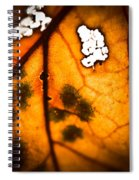 Leaf Detail Spiral Notebook