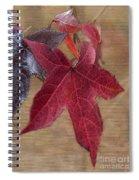 Leaf In Red Spiral Notebook