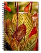 Leaf Lines Spiral Notebook