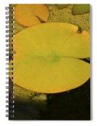 Leaf On A Pond Spiral Notebook