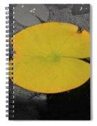 Leaf On A Pond II Spiral Notebook