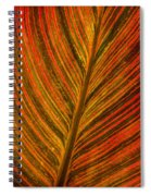 Leaf Pattern Abstract Spiral Notebook