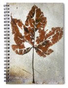 Leaf  With Textured Effect Spiral Notebook