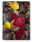 Leafs And Stones Spiral Notebook