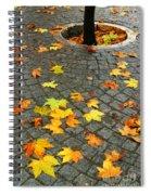 Leafs In Ground Spiral Notebook