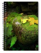 Leafs On Rock Spiral Notebook
