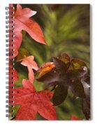 Leafy Spiral Notebook