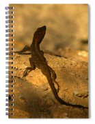 Leapin' Lizards Spiral Notebook