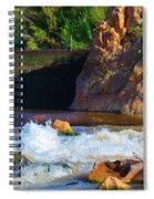 Leasburg Dam New Mexico Spiral Notebook