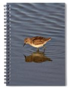 Least Sandpiper Spiral Notebook