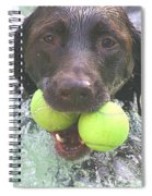 Leave No Ball Behind Spiral Notebook