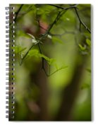 Leaves And Thorns Spiral Notebook
