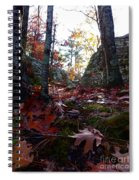 Leaves In The Forest Spiral Notebook