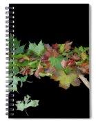 Leaves On Sidewalk Spiral Notebook