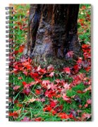 Leaves On The Ground Spiral Notebook