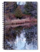 Leaves On Water Spiral Notebook