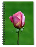 Left Standing Alone Spiral Notebook