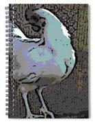 Leghorn Spiral Notebook
