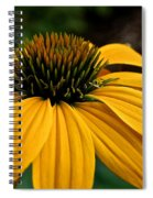 Leilani Spiral Notebook