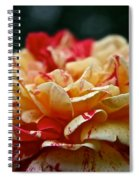 Lemon Cherry Chip  Spiral Notebook