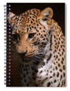 Leopard I Spiral Notebook