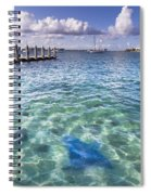 Leopard Ray Spiral Notebook