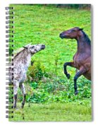 Leopard V Standardbred Spiral Notebook