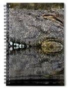 Let Sleeping Crocs Lie Spiral Notebook