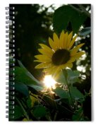 Let The Sun Shine Spiral Notebook