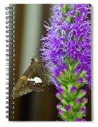 Liatris And Skipper Spiral Notebook