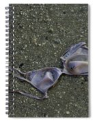 Liberated Woman Spiral Notebook